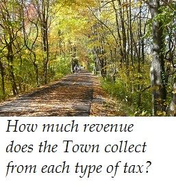 Annual Tax Revenue